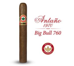 antan_o_big_bull_1_17cbf62